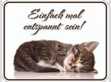 Katze Schilder günstig & sicher kaufen bei Yatego