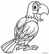 Parrot Coloring Pages Printable Parrots Cockatiel Adults Bird Print Realistic Cool2bkids Colouring Sheets Fish Adult Getcolorings Designlooter Results Getdrawings 750px sketch template