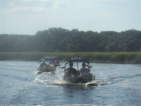 Amelia Island Catamaran Tour by Near Fort Clinch Picture Of Backwater Cat Adventure