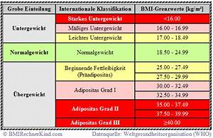 Bmi Rechner Body Mass Index Bmi Berechnen : body mass index definition bmi formel bmi rechner kind ~ Themetempest.com Abrechnung