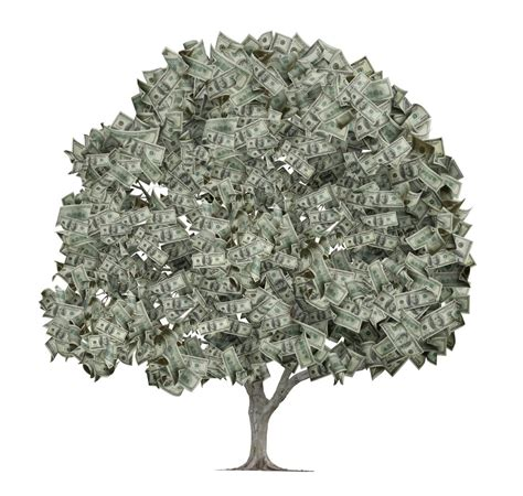 Images Of Money Tree How I Make Money Blogging The Nutritionist Reviews