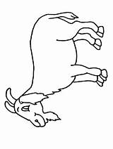 Goat Pages Coloring Colouring Printable Sheet Clipart Sheets Activity Cliparts Goat2 Cartoon Mountain Children Library Coloringpages101 Clip Site Popular sketch template