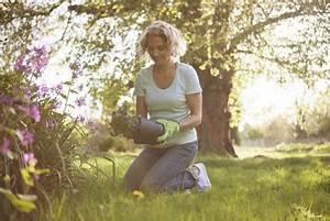 Que Planter En Juin : que planter au mois de juin gamm vert ~ Melissatoandfro.com Idées de Décoration