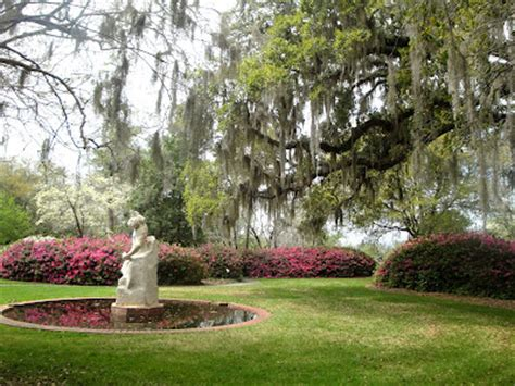 discover the side of south carolina in murrells inlet