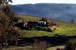Sonoma County, CA Golf   Golf Vacations Blog