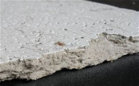 faq asbestos lcs laboratory inc