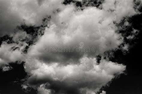 Nuvens Brancas Isoladas No Fundo Preto Imagem de Stock