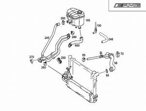 C32 Lower Radiator Hose