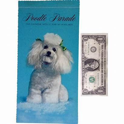 Calendar Tear Hallmark Animals Dog Poodle Postcards