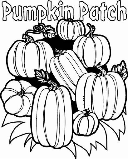Coloring Crayola Pumpkin Pages Patch Printable Sheet
