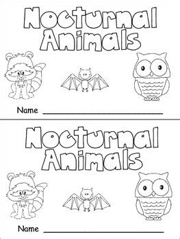 nocturnal animals preschool lesson plans nocturnal animals nonfiction leveled reader level c 418