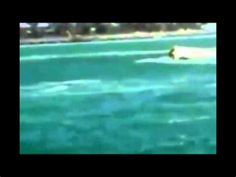 Speed Boat Fails by Speed Boat Fail Compilation 2013