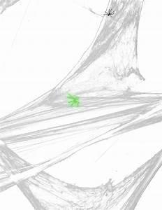 Partydeko Auf Rechnung Bestellen : spinnennetz gro halloween partydeko und g nstige faschingskost me vegaoo ~ Themetempest.com Abrechnung