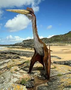 Quetzalcoatlus | Paleontology World  Quetzalcoatlus