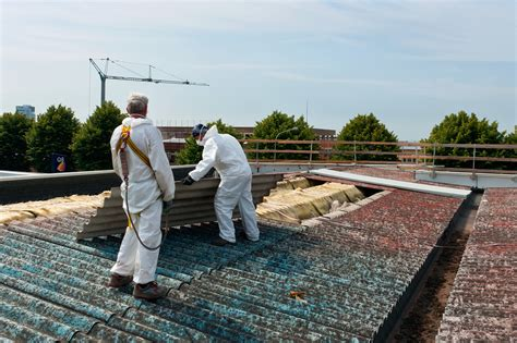 professionals   removing asbestos