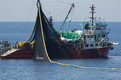 Tuna Boat Sinks 2016 by Stop Importing Illegally Bluefin Tuna Forcechange