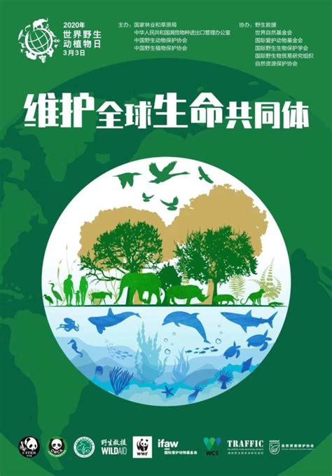 世界野生动植物日|我国濒危野生动植物种群总体稳中有升|野生动物_新浪新闻