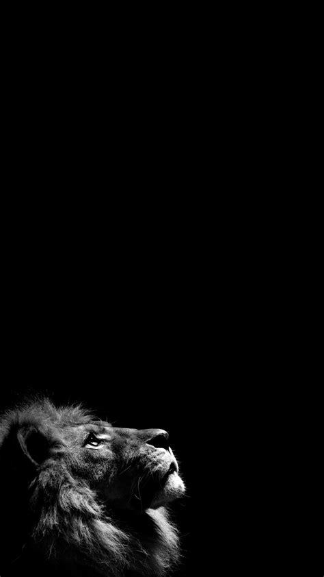 Woman Dog Street Dark Iphone 6 Wallpaper Download - Black