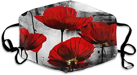 Amazon.com : nobrand Beautiful Red Poppy Flower Art