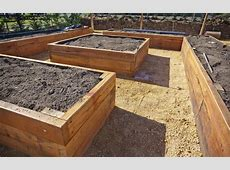 Beginner Raised Bed Gardening Guide Planet Natural