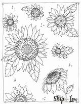 Sunflower Coloring Pages Kansas Sheets Printable Adult Flower Colouring Adults Fence Patterns Books Sunflowers Calm Pattern Down Skiptomylou Lou Skip sketch template