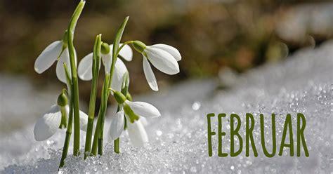februar  neue und aktuelle bilder kostenlos