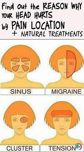 Everyone Has Experienced A Headache  The Most Well