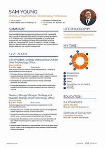 Work Experience In Resume Real Career Change Resume Example Enhancv