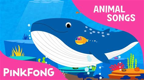 whoosh blue whale blue whale animal songs pinkfong