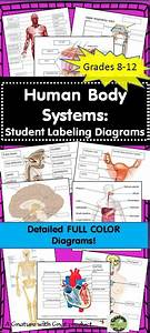 1000  Images About Health  U0026 Art On Pinterest