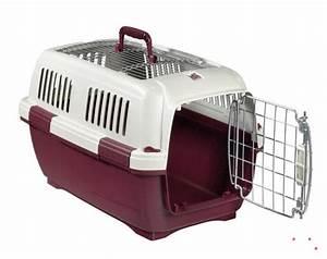 Caisse De Transport Chat Gifi : quelle caisse de transport pour mon chat chatpristi ~ Dailycaller-alerts.com Idées de Décoration