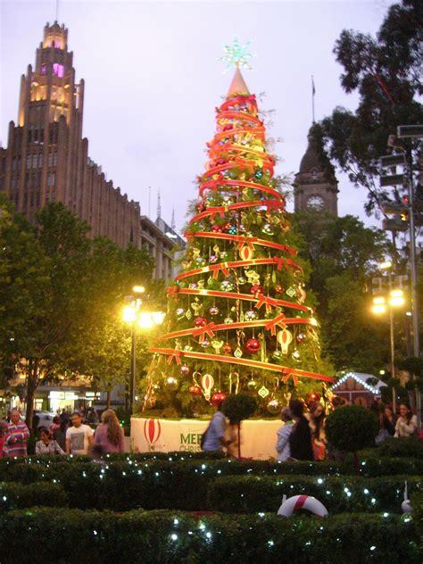 simple simon  melbourne christmas trees