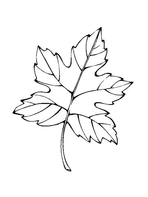 kids  funcom  coloring pages  leaves