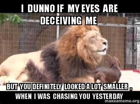 I Dunno Meme - i dunno if my eyes are deceiving me but you definitely looked a lot smaller when i was chasing