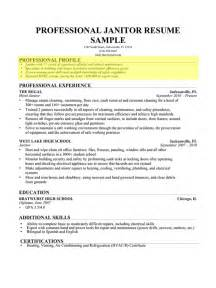 Professional Profile Exles For Resume exles of profiles for resumes resume exles 2017