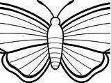 Coloring Marigold Moth Pages Butterfly Getcolorings Printable Mothman Clipartmag Drawing Killer Pa sketch template