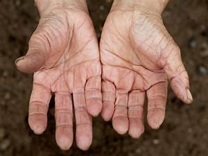 professional secrets of hands. does anyone has four ...