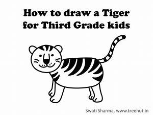Draw A Tiger  Video Instructions For Grade Three Kids