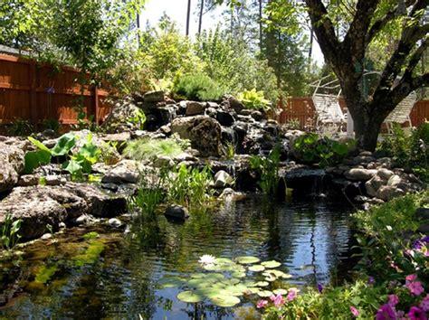 amazing fish ponds amazing backyard pond design ideas rilane