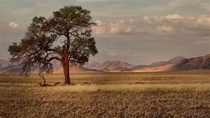 Savannah Namibia Africa Wallpapers Savanna African Trees