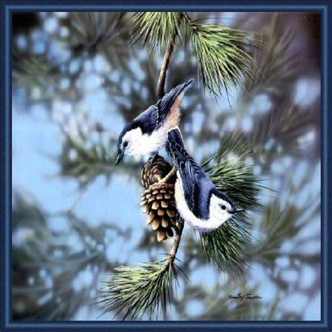 Birds - XciteFun.net