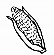 HD Wallpapers Corn On The Cob Coloring Page