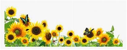Sunflower Border Transparent Pngitem