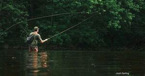 Fifty Fly Fishing Tips   28