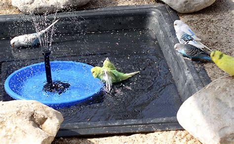Bademöglichkeit, Bachlauf, Teich In Der Siphon Badewanne Ausbauen Bodengleiche Badewannen Villeroy Zwillinge Ausbessern Duschabtrennung Ohne Bohren Duschbrause Für Zwei Personen