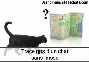 Puce De Géolocalisation : trace gps d 39 un chat sans laisse des hommes et des chats ~ Maxctalentgroup.com Avis de Voitures