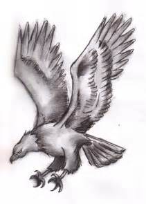 Flying Eagle Pencil Drawings