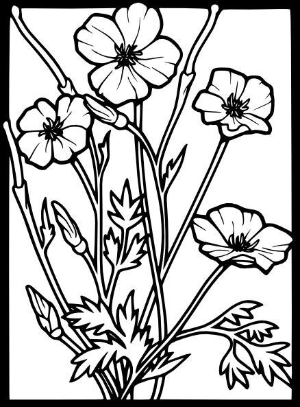 poppy clip art  clkercom vector clip art