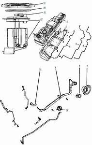 35 Jeep Wrangler Evap System Diagram