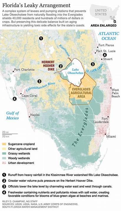 Algae Florida Map Water Blooms Beaches Maps